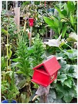 melbourne community garden gorgeous garden ideas pinterest