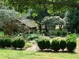 cottage garden ideas a storybooklife blog creative garden