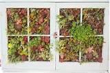 ideas for old window frames window frame garden houselogic