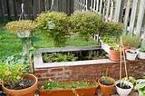 raised brick pond | Backyard ideas | Pinterest