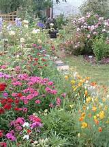 english gardens english garden ideas pinterest