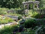 Perennial Paradise ~ a Backyard Garden... - a photo on Flickriver