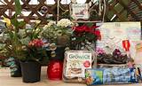 Great gifts for gardeners