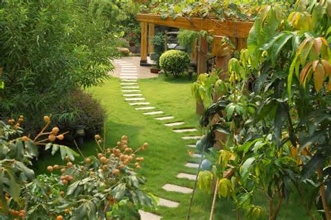 Landscapes - Garden, Design & build