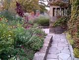 cottage garden garden ideas pinterest