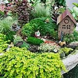 fairy garden container ideas ideas plant a fairy garden