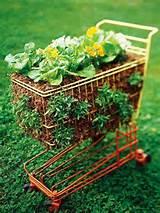 Simple Salad-Garden Containers   Gardening   Pinterest