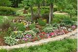 Cheap Landscaping Ideas Flower,Plants | For the Home | Pinterest