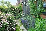 cottage garden with roses after reader remodel contest 2013