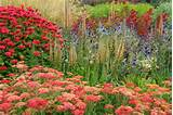 ideas, Perennial Planting, Perennial combination, Summer Borders, Fall ...