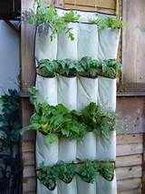 Small Space Gardening – 20 Clever Ideas to Grow in a Limited Space ...