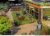 landscaping western landscaping ideas