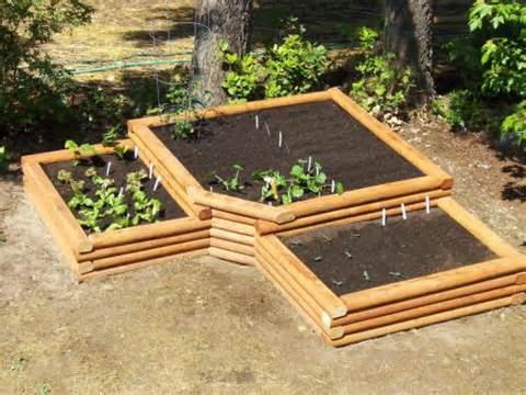 raised bed garden plans really work