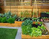 ... Design and Ideas 2016 | Best small vegetable garden ideas on a budget