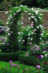 Rose arbor | cottage garden | Pinterest