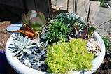 miniature garden example | Faeries and Doodlebugs | Pinterest