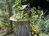 forest garden series best ideals to add wildlife to your garden