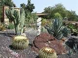 ... County Arboretum & Botanic Garden - stacked rocks in the cactus garden