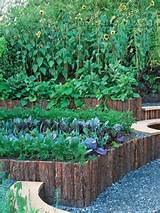 Photo by HGTVGardens Crew - Raised Beds Lift Plants Above Ground Level