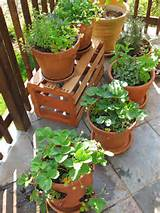... space with a container patio vegetable garden Patio vegetable garden