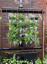 green decor vertical garden ideas garden pinterest