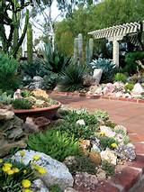 succulent garden at sherman library gardens author s photographs