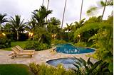 gardening image tropical garden backyard pool tropical garden backyard