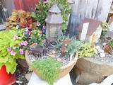 miniature fairy gardens ideas and pictures