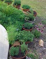 another herb container garden idea garden containers pinterest