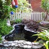 The Mini Garden Guru – Your Miniature Garden Source