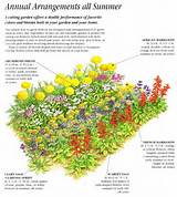annual cut flower garden layout ideas for the garden pinterest