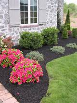 ... to improve the curb appeal of your House: Black Synthetic Mulch Garden