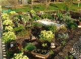 Spring Decorating and Planning to Go Greener with Garden and Backyard ...