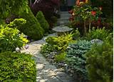 Evergreens - Low Maintenance Landscaping - 12 Great Ideas - Bob Vila