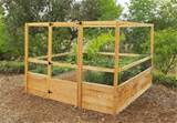 8x8 raised bed kit with deer fencing raisedbeds com raisedbeds com