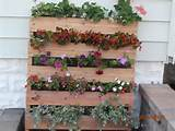 vertical garden is perfect for homes with limited space