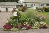 Mailbox garden idea | Gardening | Pinterest