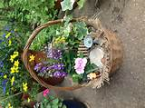 Gnome Garden | Garden Ideas | Pinterest