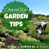 cheap and easy garden tips via survival at home