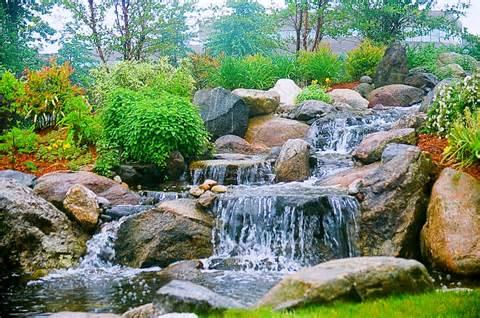 dana landscaping water gardens traditional landscape design dana ...
