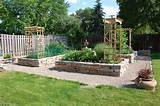 Backyard raised garden | Garden Ideas | Pinterest