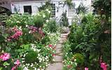 Lay of the Landscape: Cottage Garden Style