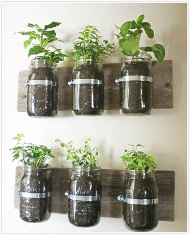 indoor herb garden seeds