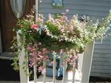 flower box flowers garden ideas pinterest