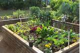 Simple Herb Garden Design for the Perfect AppetizerEdition Chicago ...