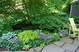 new slideshow of my 54 top shade plants a way to garden