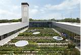 Artful Landscapes: 10 Modern Landscape Architecture Designs