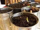 school gardening club fundraising