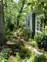Small Garden Design - Landscape and Gardening - Habitat Design
