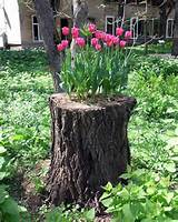 bunte Gartendeko für bunte Gartengestaltung - fresHouse